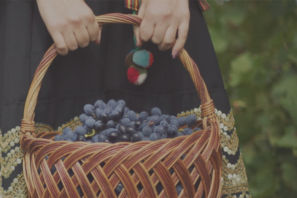Moldova Wines